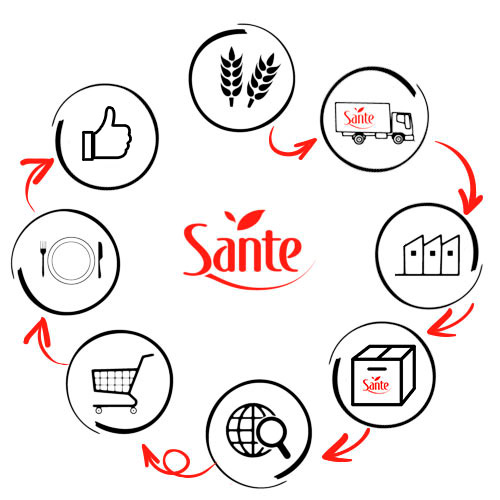 Proces produkcji Sante