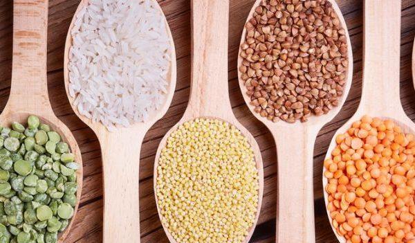 Bakterie jelitowe na straży odporności
